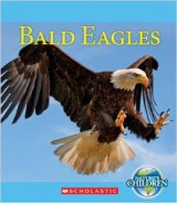 eagles-bald-dolbear