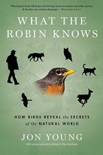 eagles-what-the-robin-knows