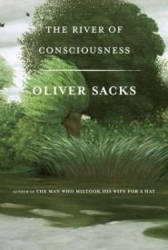 River of Consciousness