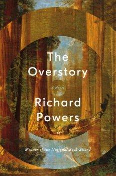 Overstory