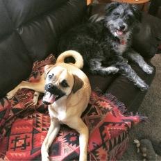 Max (left) and Stella